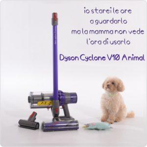 Dyson Cyclone V10 Animal